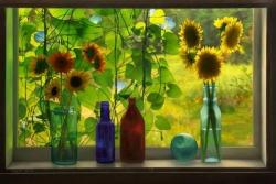 Sunflowers in Cabin Window